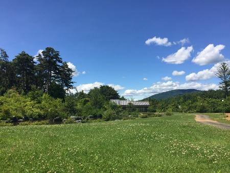 日本庭園前広場 (450x338)