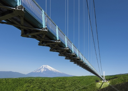 skywalk_photo_01 (450x320)