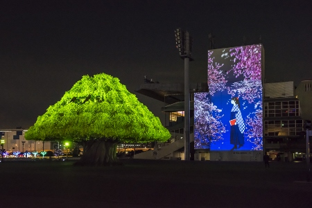 15-6 TOKYO MEGA TREE GARDEN⑥ (450x300)