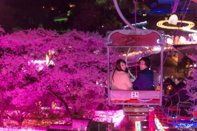 140407夜桜イルミ (101) (400x267)