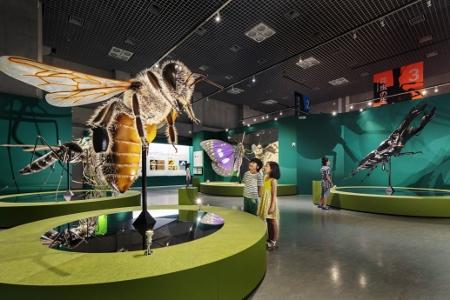 ③国立科学博物館での展示イメージ (450x300)